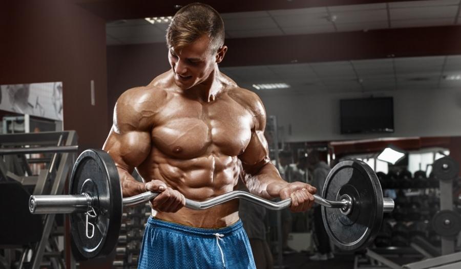 50 dicas de musculação simples para resultados rápidos